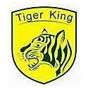 MOTEURS TIGER KING